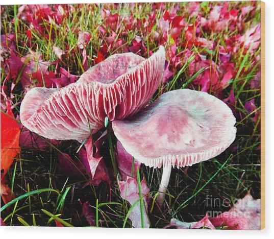 Mushrooms And Autumn Leaves Wood Print