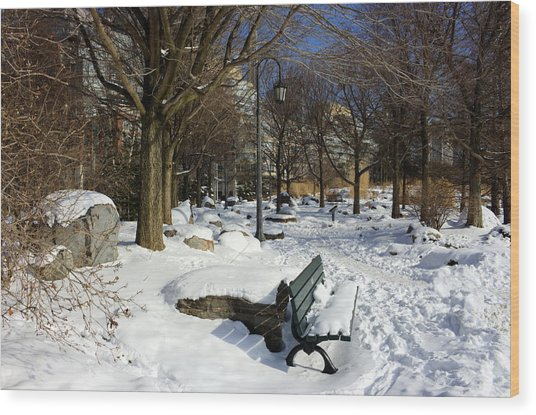 Music Garden Winter Wood Print
