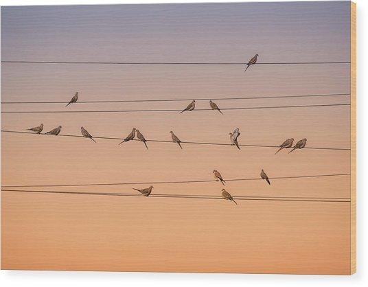 Music Of Light Wood Print
