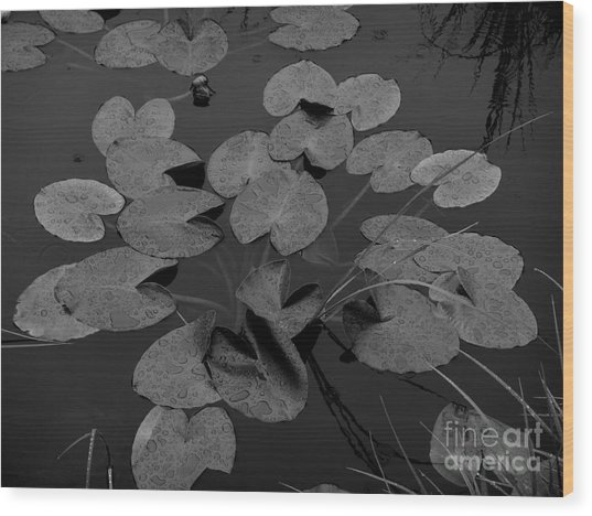 Wood Print featuring the photograph Muskeg Pond by Laura  Wong-Rose