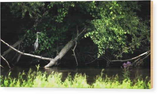 Muskegon River Heron Wood Print