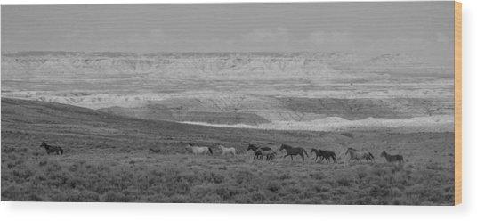 Mustangs Of The Adobe Wood Print