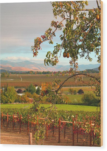 My Favorite Valley View - Autumn In Southern Oregon Wood Print