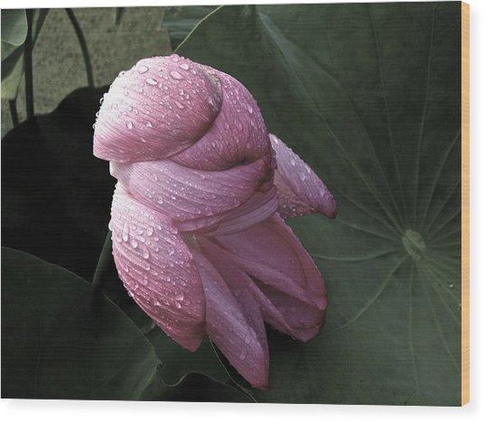 My Lotus My Love Wood Print