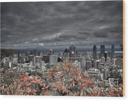 My Montreal's Colors Wood Print
