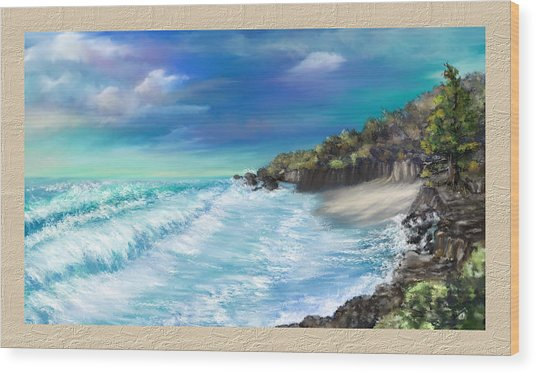 My Private Ocean Wood Print