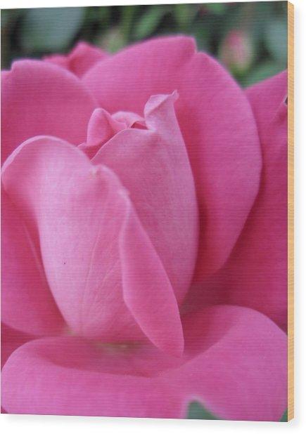 My Rose Wood Print