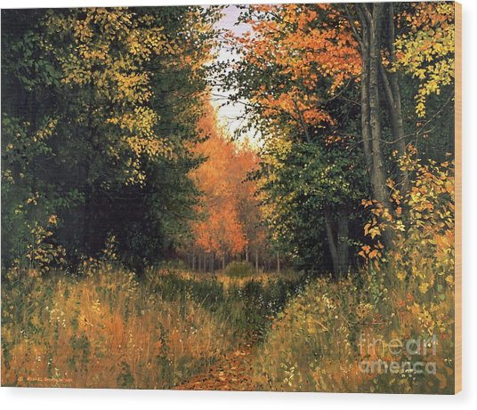 My Secret Autumn Place Wood Print