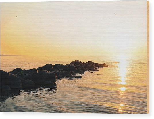 My Stepping Stones Wood Print by BandC  Photography