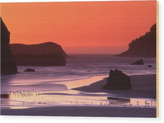 Myers Creek Sunset Wood Print