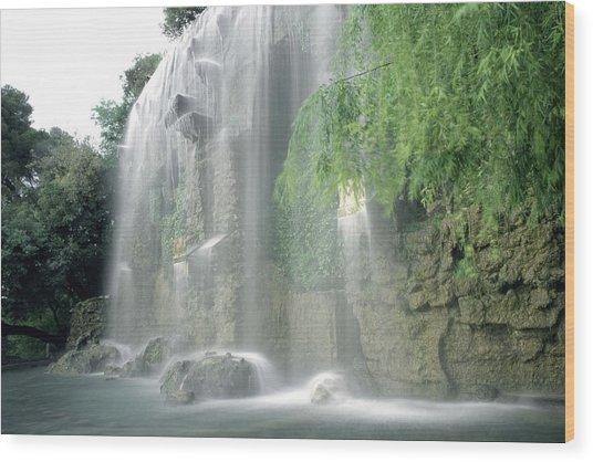 Mystic Falls Wood Print
