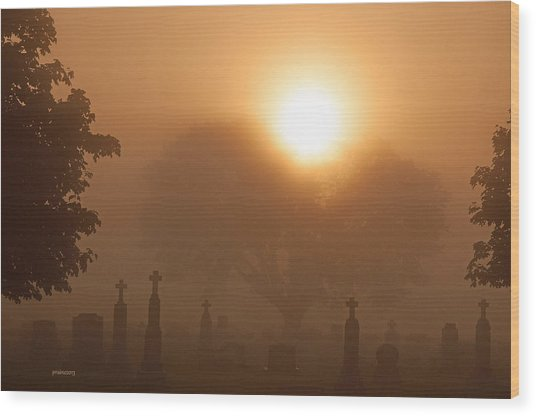 Mystical Fog Wood Print