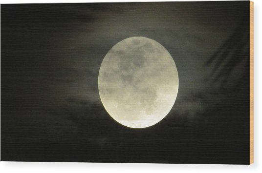 Mystical Moon Over Tampa Wood Print