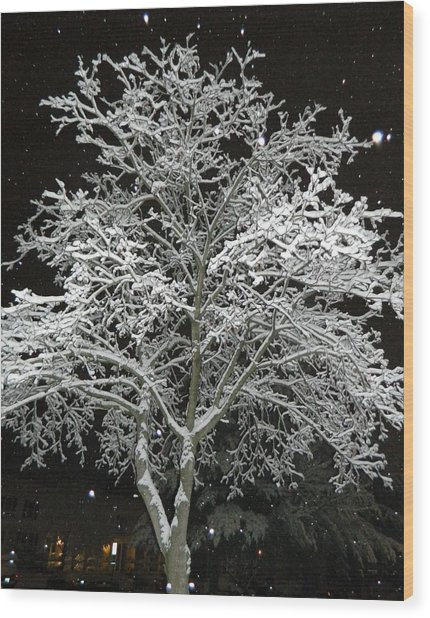 Mystical Winter Beauty Wood Print