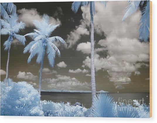 Nail Bay Infrared Wood Print