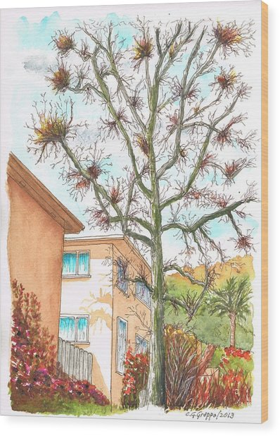 Naked Tree In Laurel And Selma Avenue, West Hollywood, California Wood Print by Carlos G Groppa