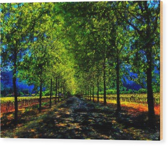 Napa Vineyard 2 Wood Print by Cary Shapiro