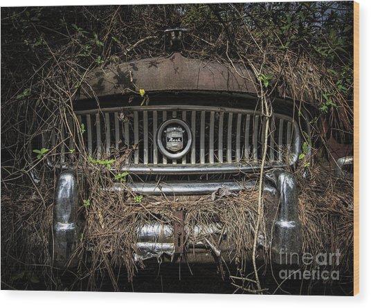 Nash Undercover Wood Print