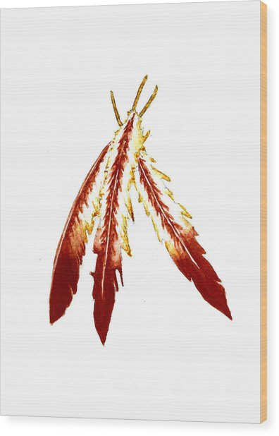 Native American Feathers  Wood Print
