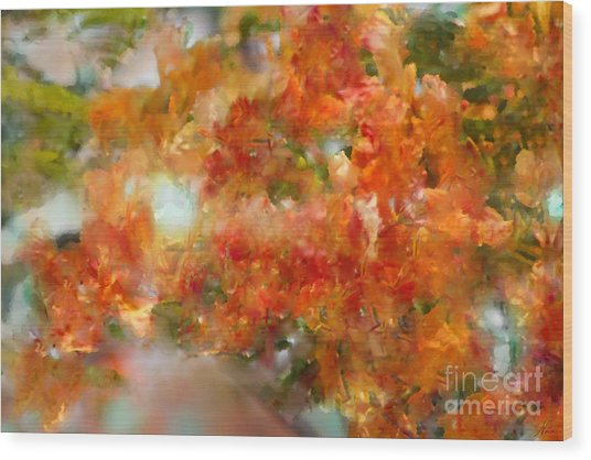Natural Abstractions #12 The Orange Tree Wood Print