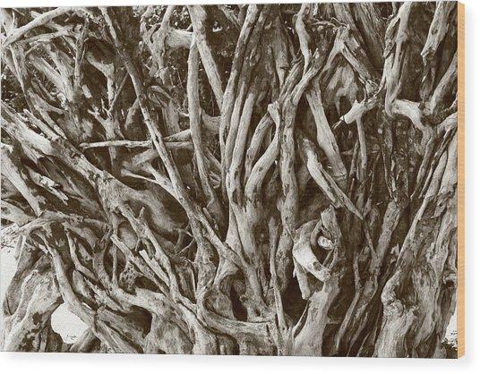 Natural Artwork Wood Print