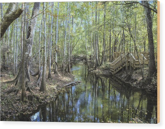 Natural Bridge Springs Wood Print by Frank Feliciano