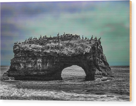 Natural Bridges State Beach Wood Print