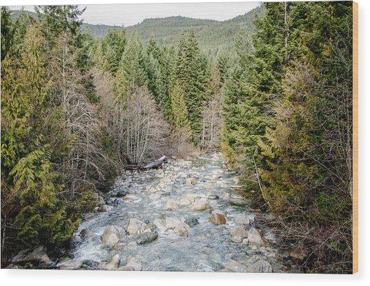 Island Stream Wood Print