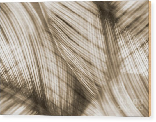 Nature Leaves Abstract In Sepia Wood Print by Natalie Kinnear