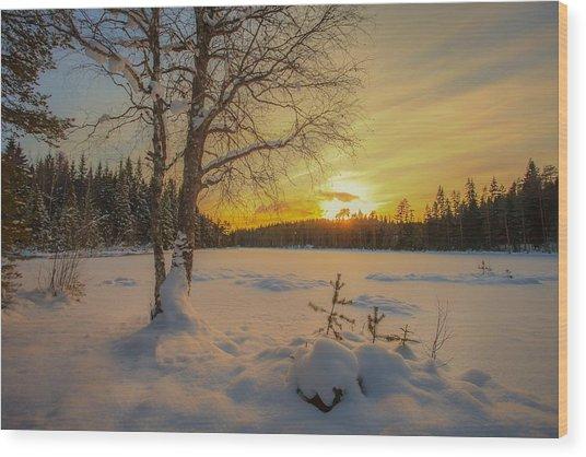 Nature Of Norway Wood Print