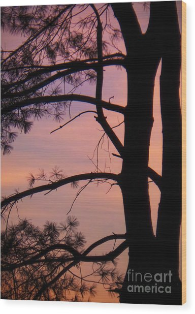 Nature Sunrise Wood Print