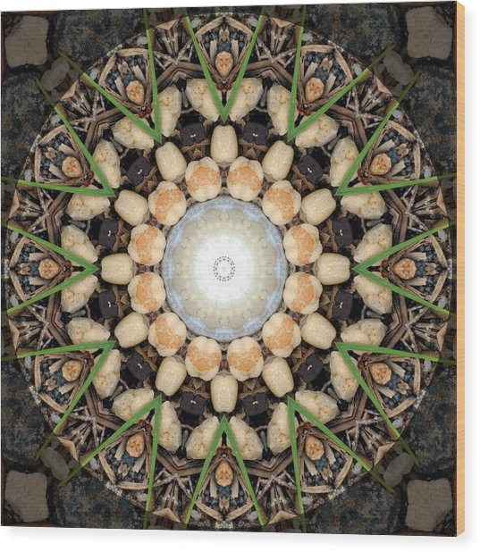 Nature Vortex Mandala #1 Wood Print