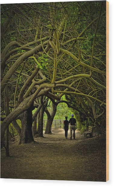 Nature Walk Wood Print