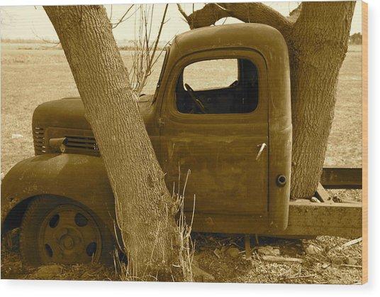 Nature Wins Wood Print by Artist Orange