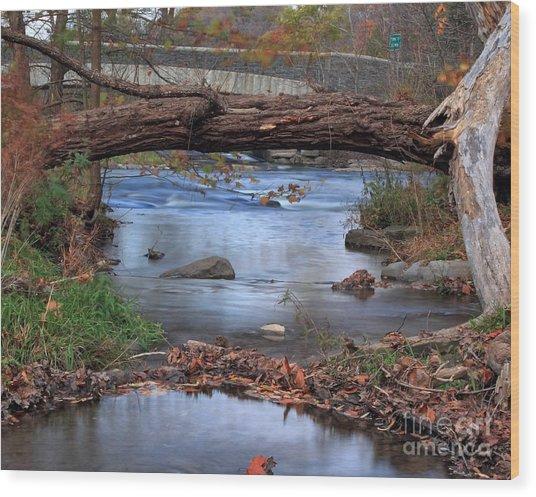Nature's Bridge Wood Print