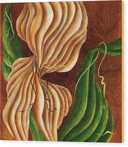 Nature's Curves Wood Print by Brenda Bryant