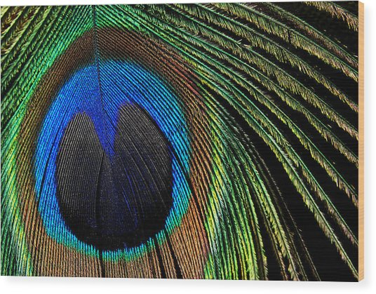 Nature's Loom Wood Print