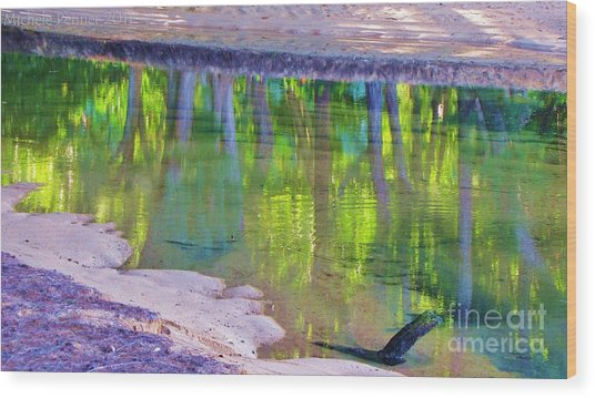 Natures Mirror Wood Print