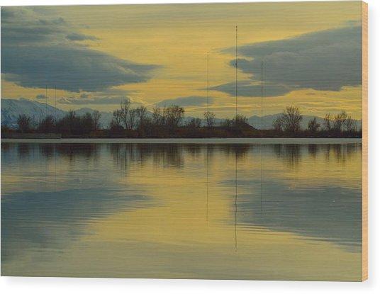 Natures Mirror Wood Print by Robert Reese