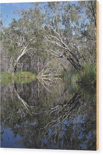 Natures Portal Wood Print