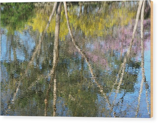 Nature's Reflections Wood Print