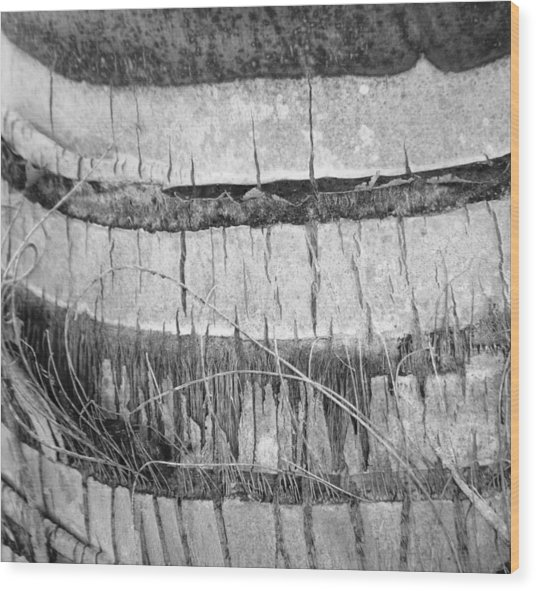 Nature's Repetition Wood Print by Natache  DOyen