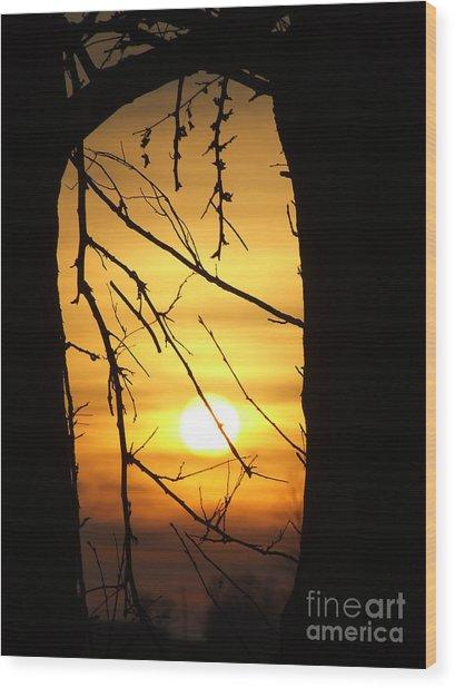 Natures Window Wood Print