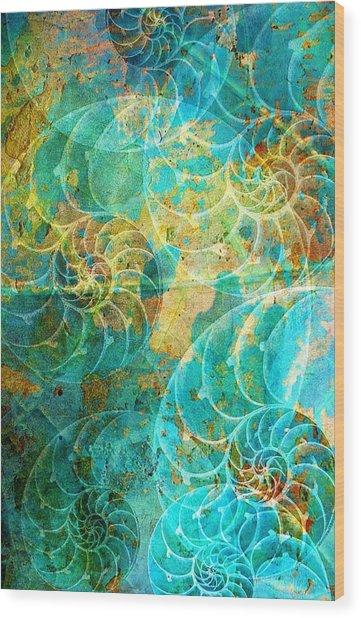 Nautilus Seashells In Aqua Wood Print