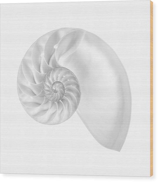 Nautilus Shell Interior Wood Print