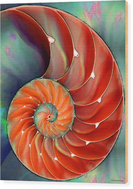 Nautilus Shell - Nature's Perfection Wood Print