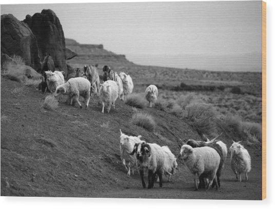 Navajo Sheep Wood Print