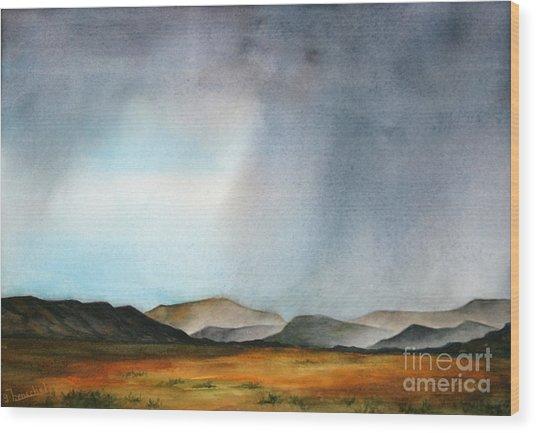 Navajo Storm Wood Print