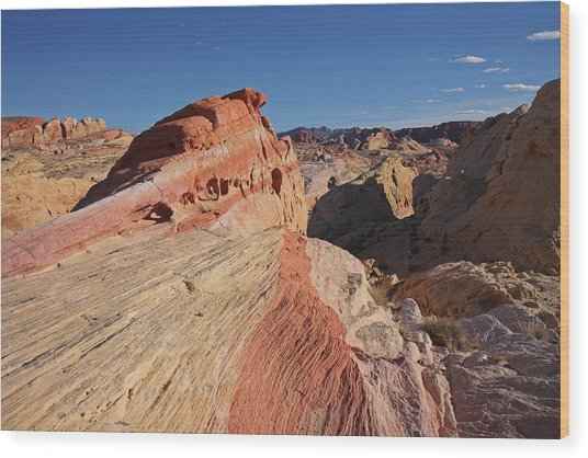 Near The Swoosh At The Valley Of Fire Wood Print