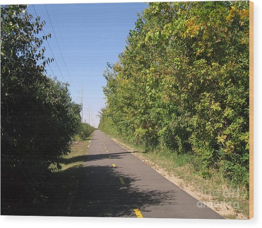 Neighborhood Bicycle And Walking Trail Wood Print